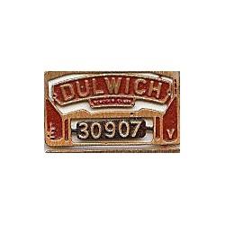 30907 Dulwich