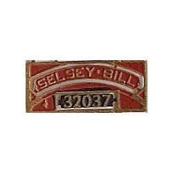 32037 Selsey Bill
