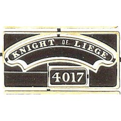 4017 Knight of Liege
