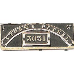 3051 Stormy Petrel