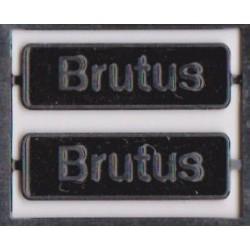 68019 Brutus