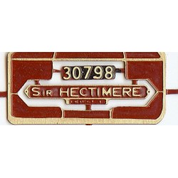 30798 Sir Hectimere