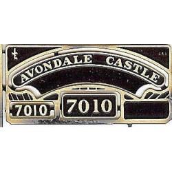 7010 Avondale Castle