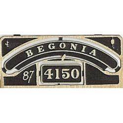 4150 Begonia